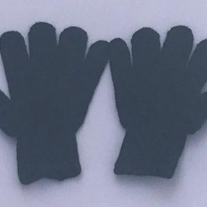 Dar-e-Arqam Uniform Gloves